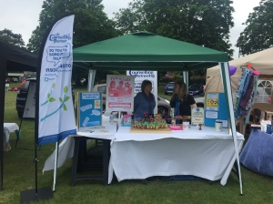 Molesey Carnival - stall